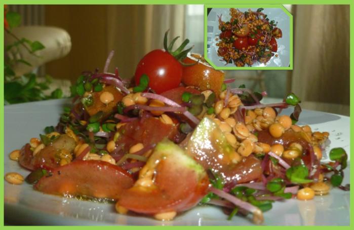 Linsen Salat mit GreenGreen (Rohkost)
