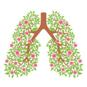 Gesundheit der Lunge