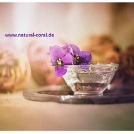 Coral CLub Produkte – Entlastungstag: Schick deinen Leib in die Kur ;)
